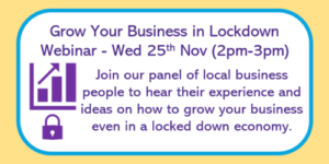 Promotion panel for Grow Your Business in Lockdown webinar on 25th November