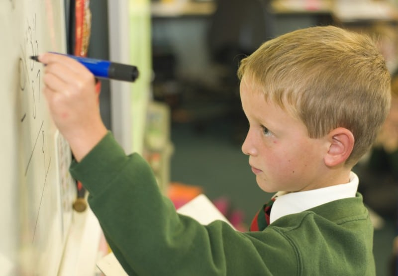 a primary school pupil